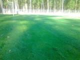 grama esmeralda e zeon